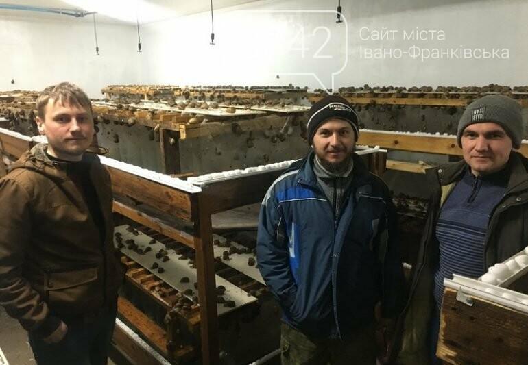 Як вирощують равликів на Прикарпатті. ФОТО, фото-1