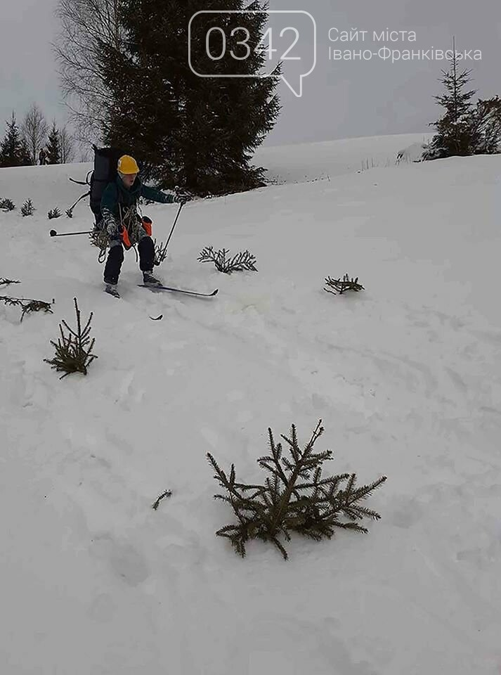 Обласні змагання з лижного туризму серед учнівської молоді відбулися в селі Яблуниця (фото), фото-6