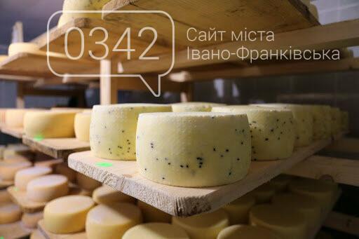 Сировар із Чесників. Як у прикарпатському селі роблять сир не гірше за швейцарців (ФОТО), фото-4