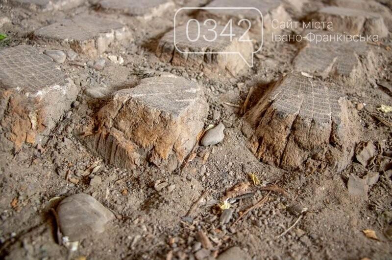 У Франківську виявили старовинну дерев'яну бруківку (ФОТО), фото-3