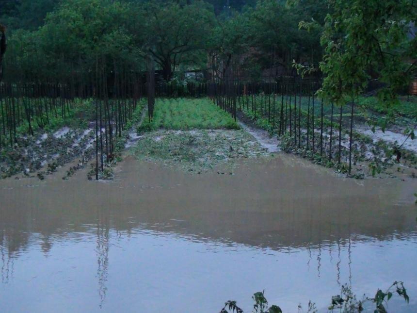 На Прикарпатті через сильну зливу підтопило понад 40 житлових будинків. (доповнено ФОТО), фото-5