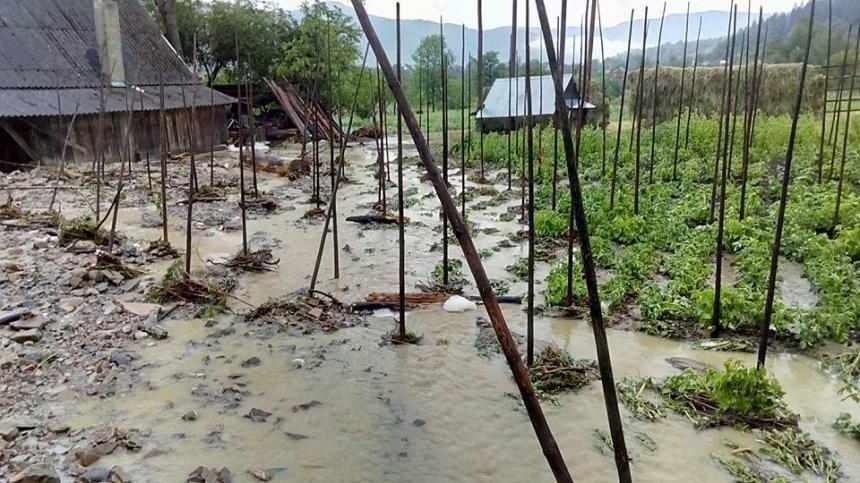 На Прикарпатті через сильну зливу підтопило понад 40 житлових будинків. (доповнено ФОТО), фото-2
