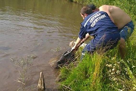 Тіло студентки із Болгарії знайшли у валізі в озері. ФОТО, фото-3