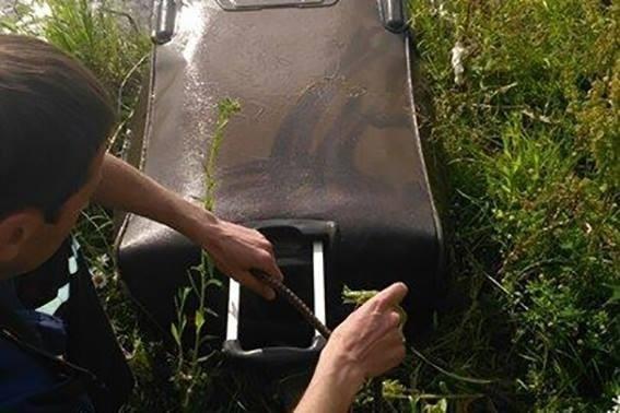 Тіло студентки із Болгарії знайшли у валізі в озері. ФОТО, фото-1