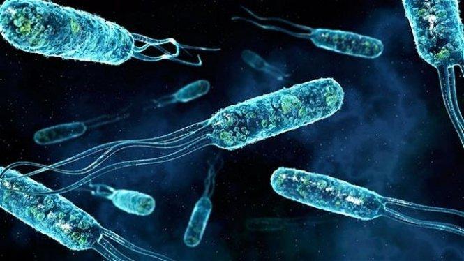 Китай розробляє супербактерію для очищення води, фото-1