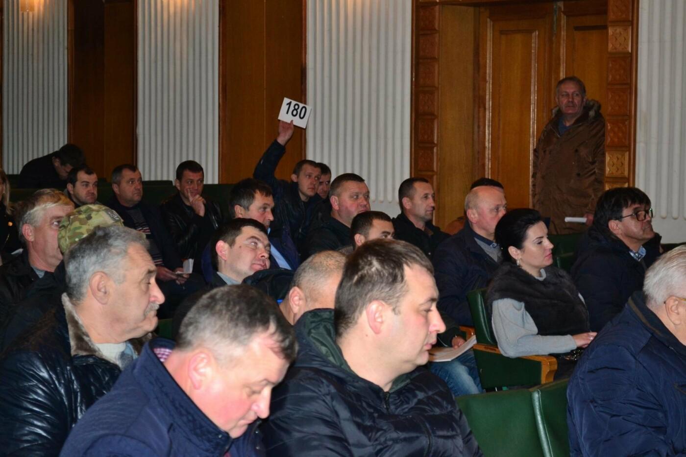 У Франківську пішло з молотка 90 тисяч кубометрів деревини ФОТО, фото-4