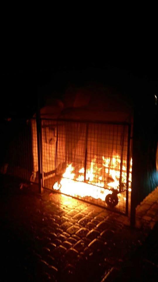 У Франківську палають смітники. ФОТО, фото-4