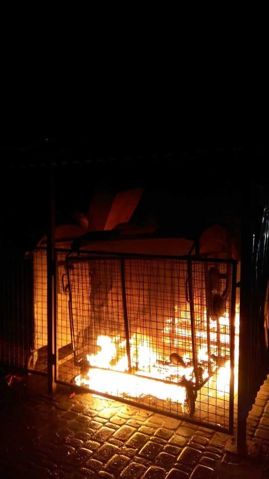 У Франківську палають смітники. ФОТО, фото-1