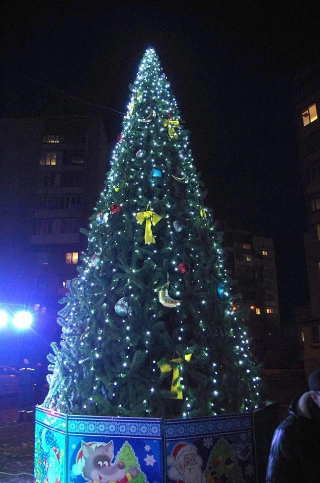 На БАМі запалили новорічну ялинку. ФОТО, фото-4