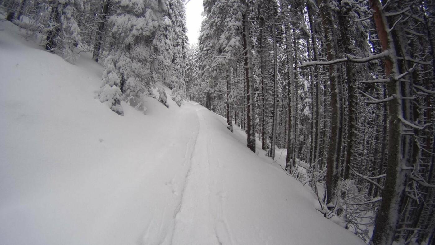 Різдвяна казка існує, і вона – у горах. ФОТО, фото-3