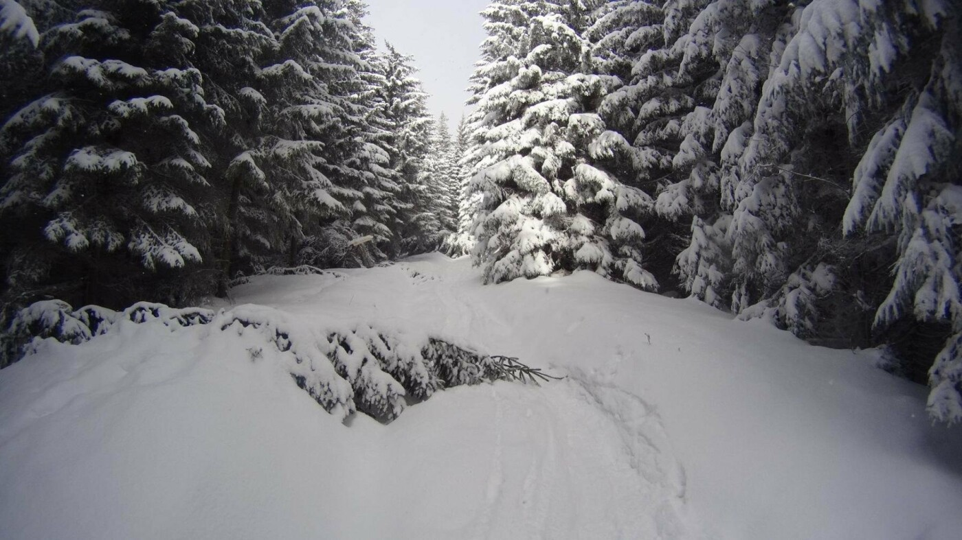 Різдвяна казка існує, і вона – у горах. ФОТО, фото-4