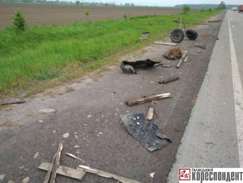 У ДТП на Прикарпатті загинув кінь. ФОТО. ОНОВЛЕНО, фото-6