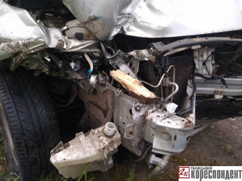У ДТП на Прикарпатті загинув кінь. ФОТО. ОНОВЛЕНО, фото-7