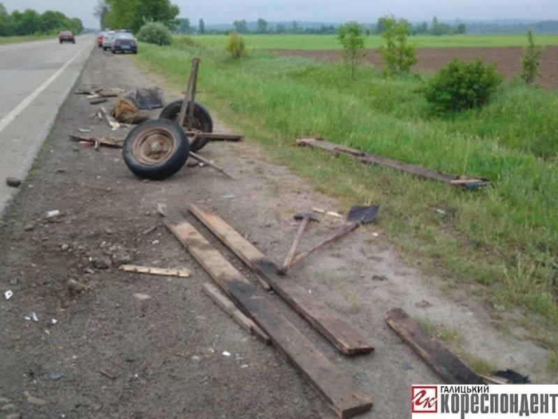 У ДТП на Прикарпатті загинув кінь. ФОТО. ОНОВЛЕНО, фото-10