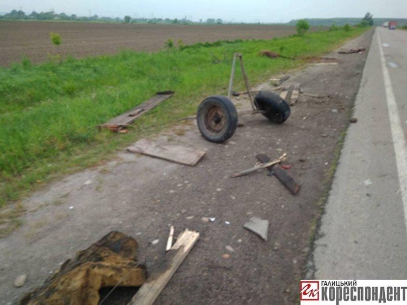 У ДТП на Прикарпатті загинув кінь. ФОТО. ОНОВЛЕНО, фото-5