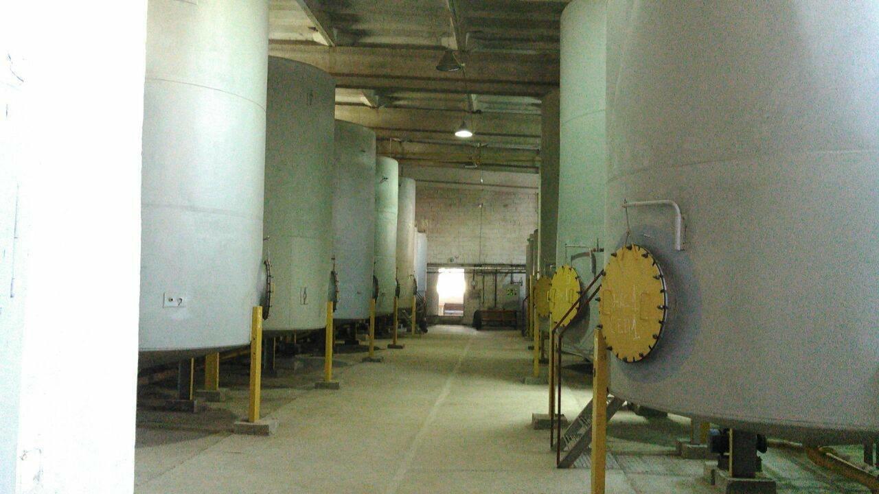 Замість біопалива на Прикарпатті підпільно виробляли спирт, фото-3