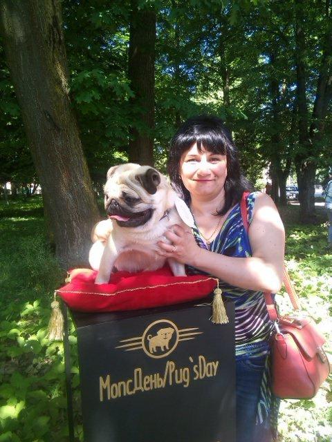 Найкумедніші з собак. МопсДень у Франківську. ФОТО, фото-7