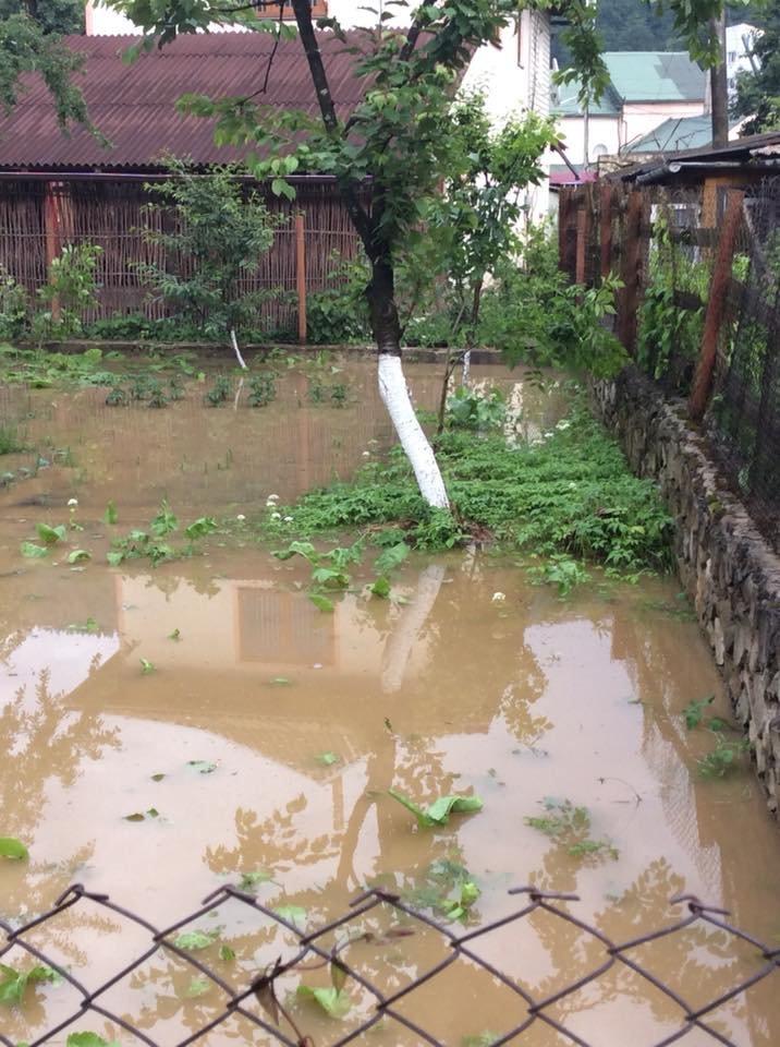 """Після зливи на Прикарпатті """"попливли"""" і людські обійстя. ФОТО, фото-3"""
