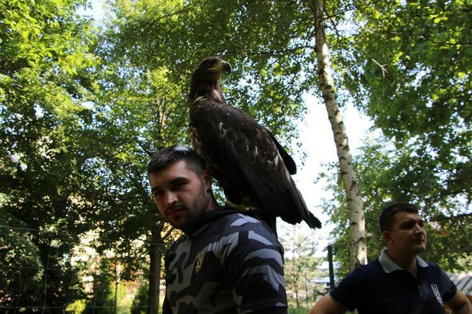 Двох червонокнижних птахів активісти врятували із неволі на Прикарпатті. ФОТО, фото-16