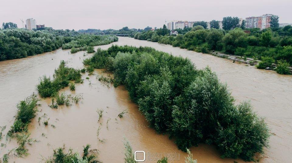 Бистриця Надвірнянська стала повноводною ФОТО, фото-7