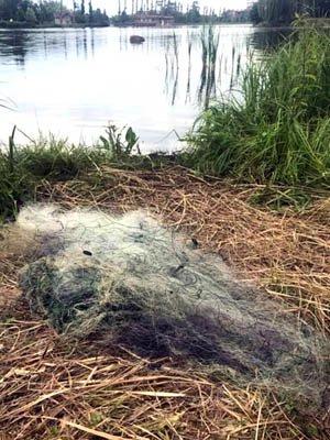 Рибоохоронний патруль вилучив  три стометрові сітки та 30 кг риби. ФОТО, фото-2