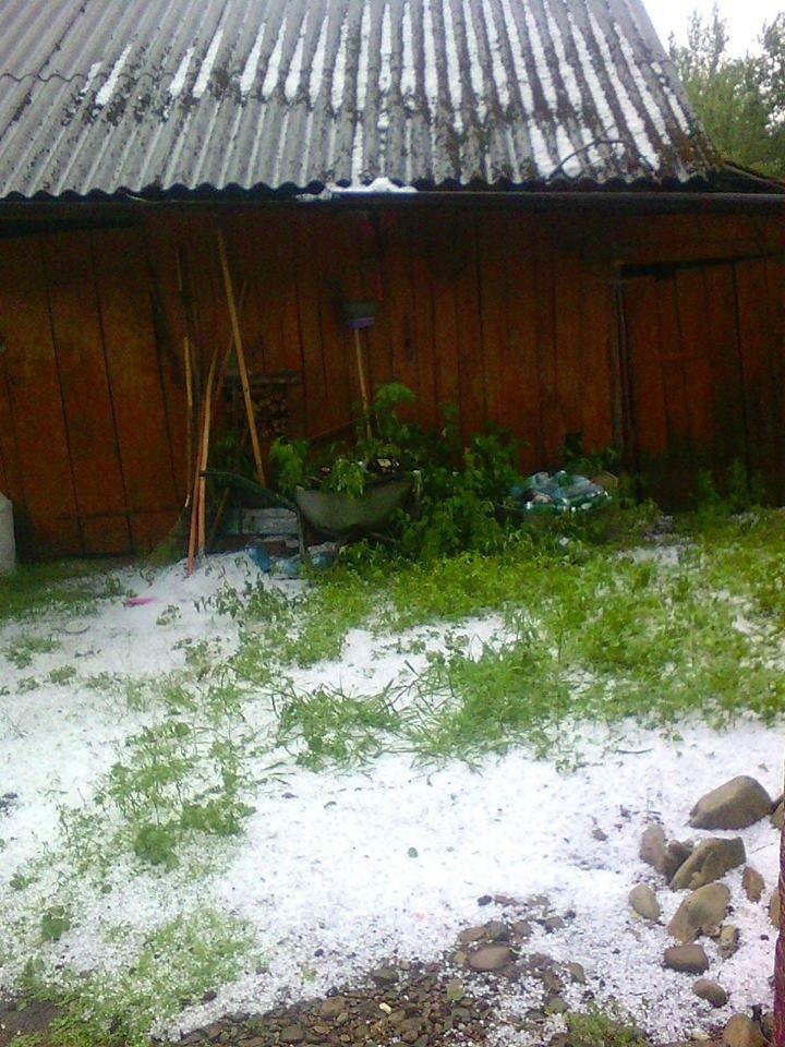 Наче, сніг. Град на Прикарпатті. ФОТО, фото-2
