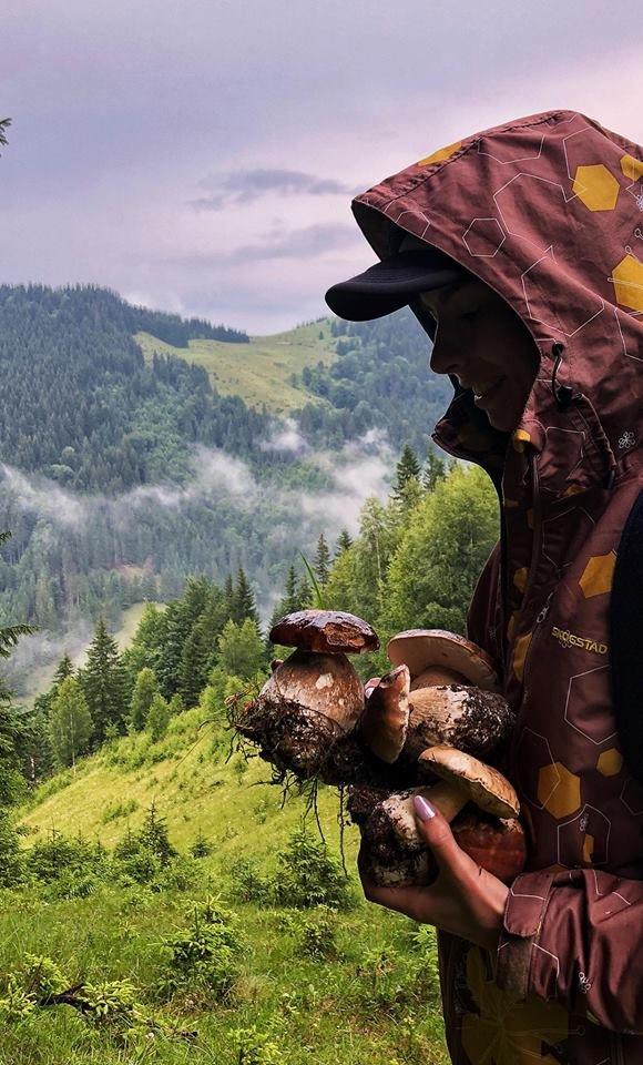 Шокуюча грибарка на Прикарпатті: майже сотня кілограмів білих грибів. ФОТО, фото-1