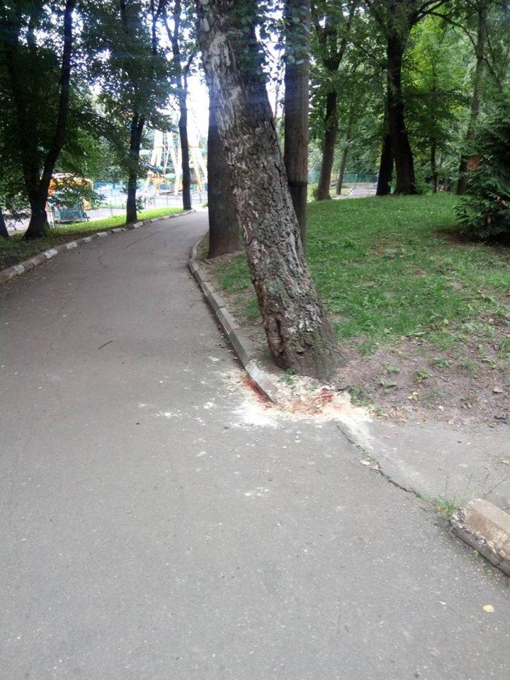 У дерево- без гальм. У калуському парку серйозно травмувався хлопчик-велосипедист. ФОТОФАКТ, фото-1