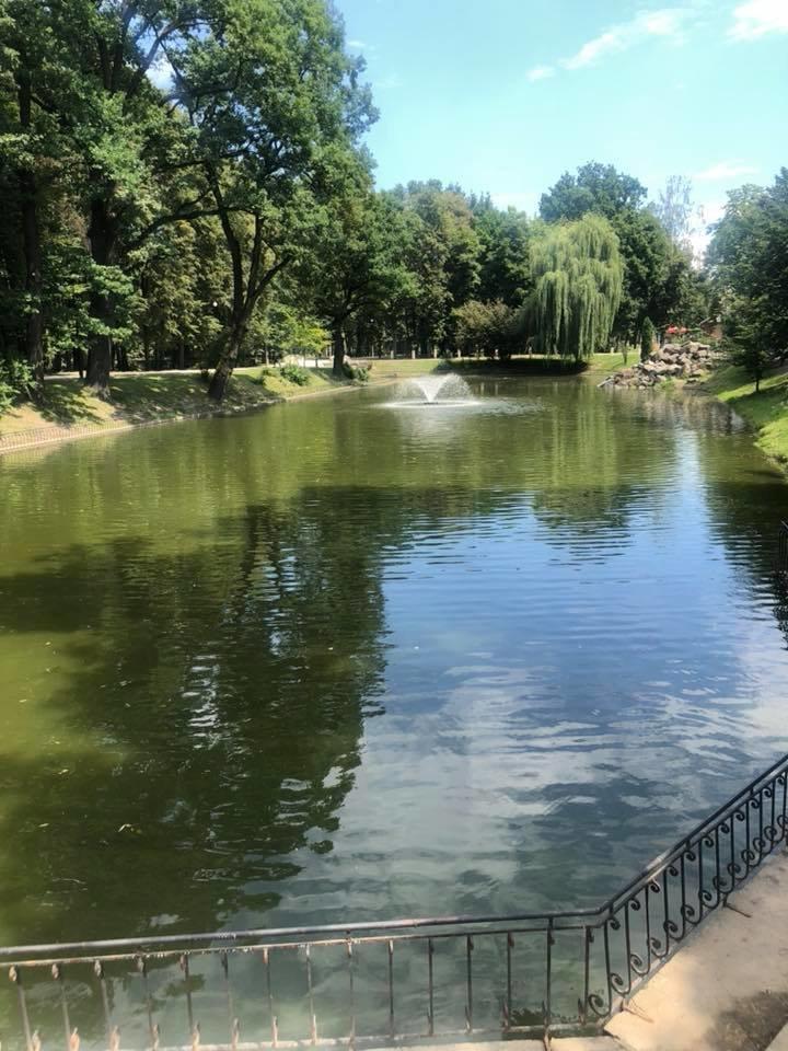 Озеро у франківському парку: до і після. ФОТО, фото-2