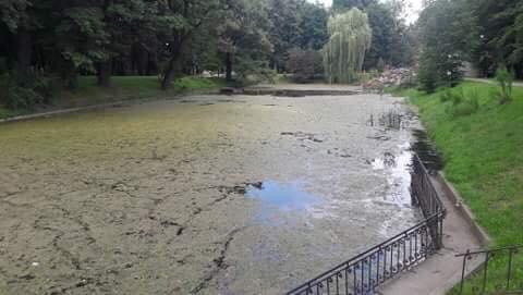 Озеро у франківському парку: до і після. ФОТО, фото-1