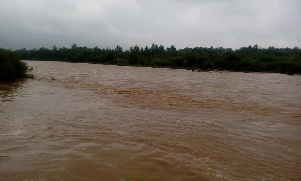 Велика вода вчорашнього дня на Прикарпатті. ФОТО, фото-2