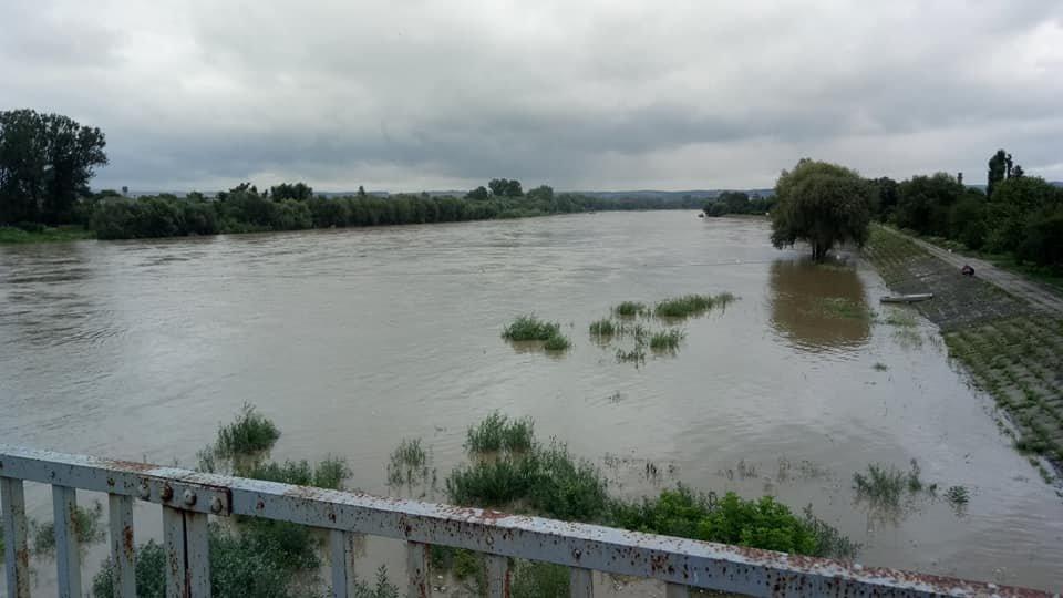 Через сильні дощі розливаються Луква та Лімниця. ФОТО, фото-4