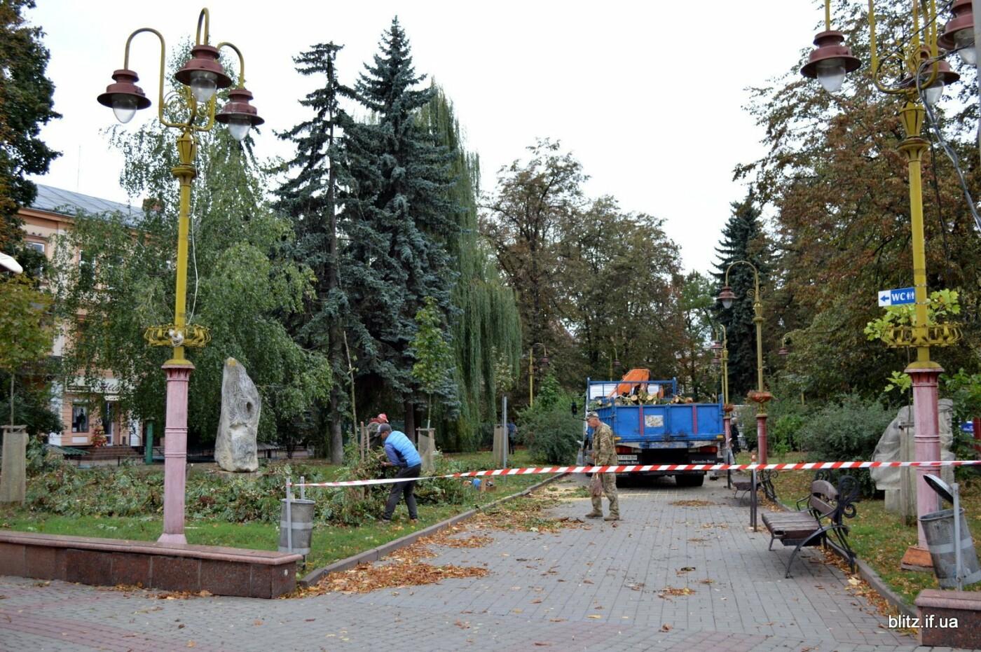 Сильний вітер у Франківську: на Вічевому майдані впало дерево. ФОТО, фото-4