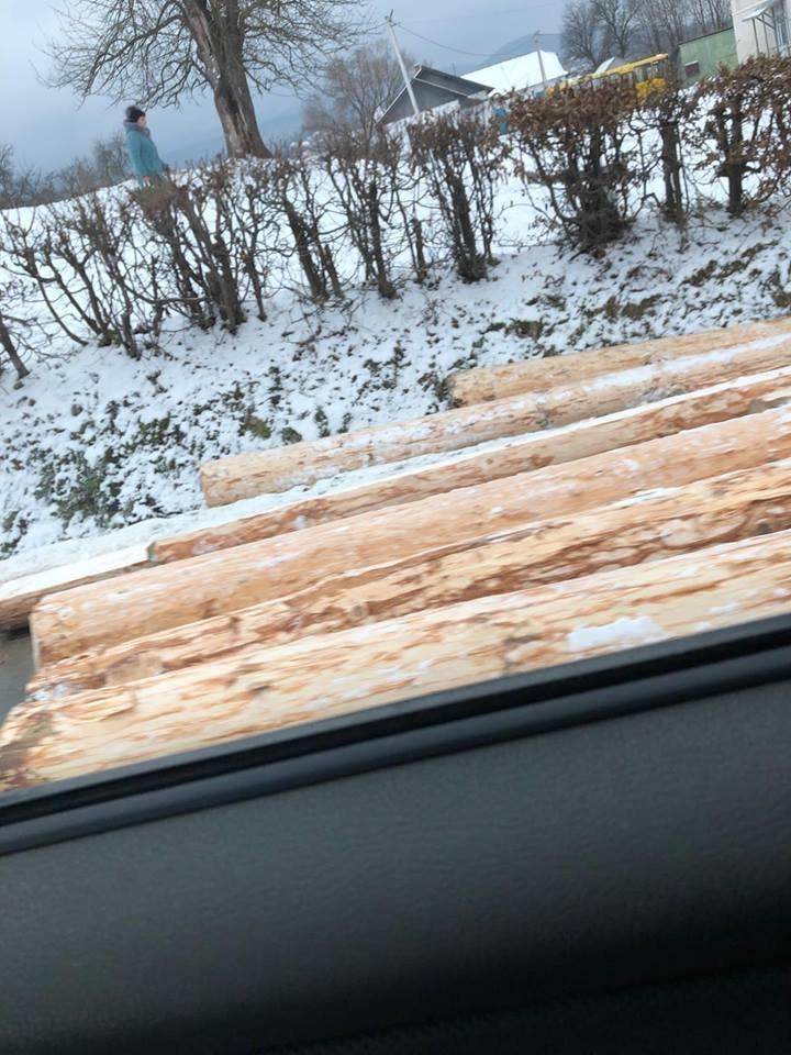 Лісовоз дорогою розкидав колоди. ФОТО, фото-1