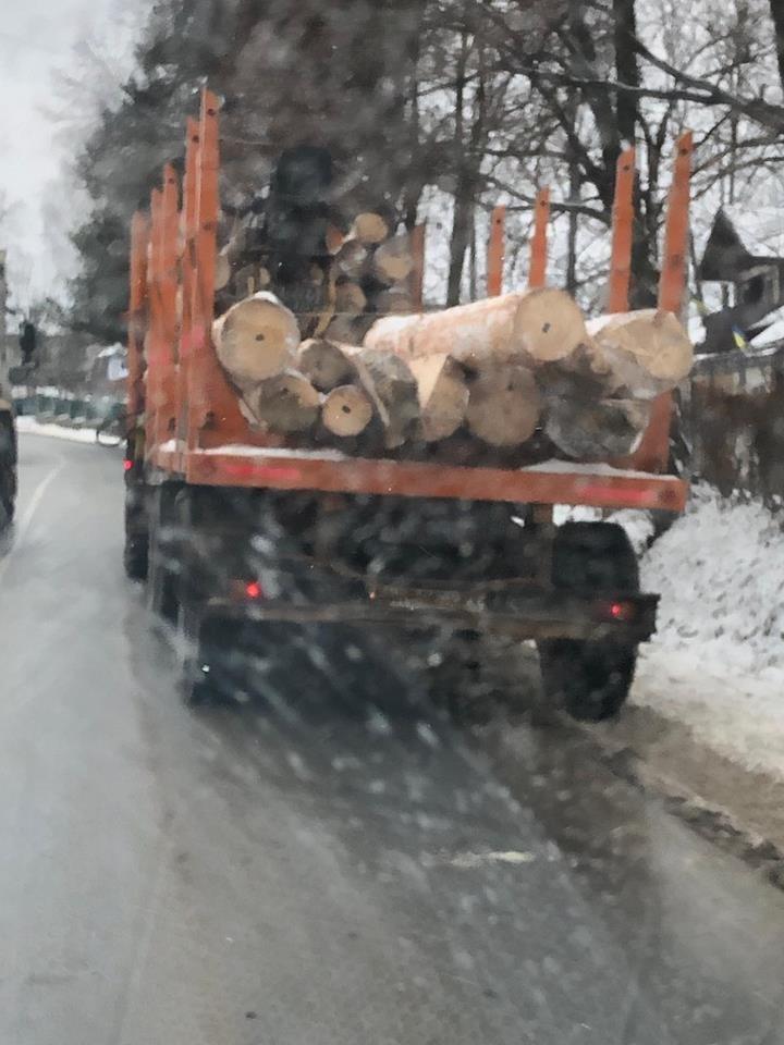 Лісовоз дорогою розкидав колоди. ФОТО, фото-2
