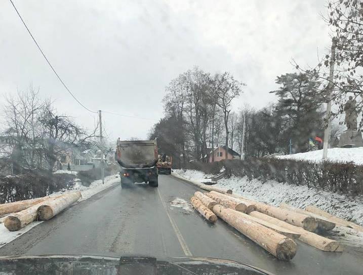 Лісовоз дорогою розкидав колоди. ФОТО, фото-3