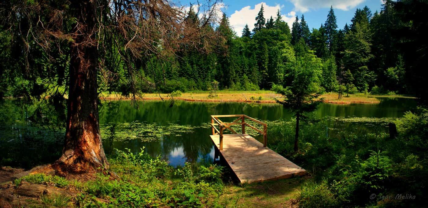 Озеро Дике (Озірце) - міні-копія Синевирського озера, фото-3