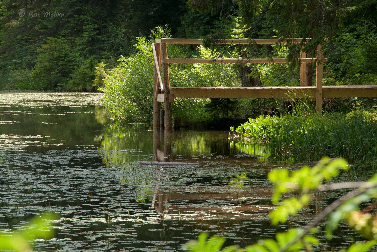 Озеро Дике (Озірце) - міні-копія Синевирського озера, фото-2
