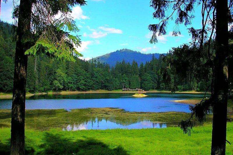 Озеро Дике (Озірце) - міні-копія Синевирського озера, фото-4