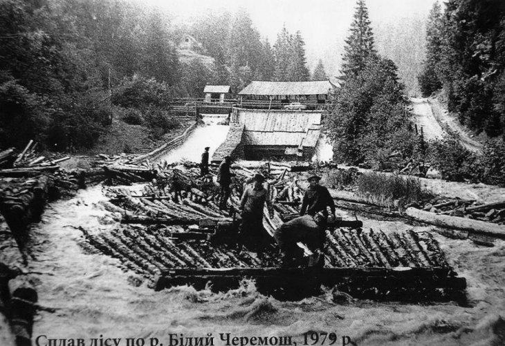 Перші каскадери. Як сплавляли ліс гуцули 100 років тому (ВІДЕО), фото-1