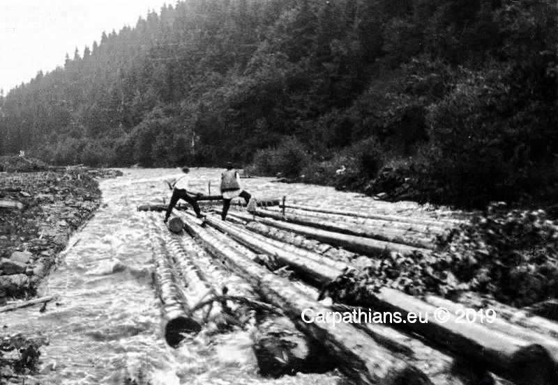 Перші каскадери. Як сплавляли ліс гуцули 100 років тому (ВІДЕО), фото-3