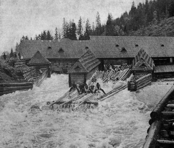 Перші каскадери. Як сплавляли ліс гуцули 100 років тому (ВІДЕО), фото-5
