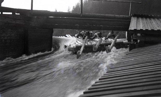 Перші каскадери. Як сплавляли ліс гуцули 100 років тому (ВІДЕО), фото-7