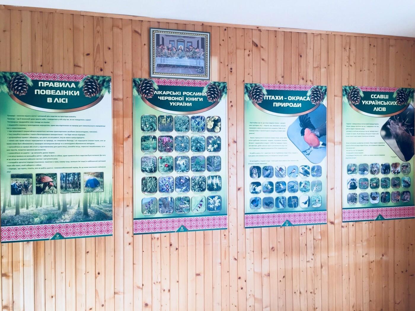 На Прикарпатті урочисто відкрили шкільне лісництво (ФОТО), фото-4