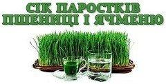 Українці створили безкоштовний онлайн-курс про здорове харчування, фото-1
