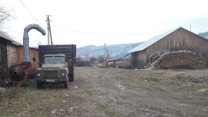 На Прикарпатті СБУ запобігла експорту зрубаного лісу на мільйони гривень, фото-1