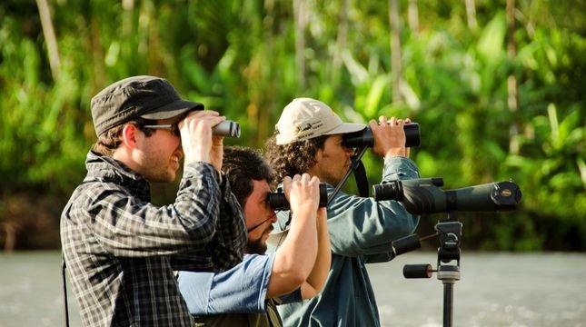 Еко-туризм: на Прикарпатті презентуюють путівник для бьордвотчерів, фото-3