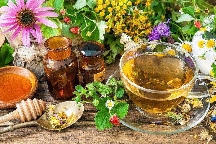 Карпатські трав'яні та квіткові чаї. Цілющі властивості з запахом гір, фото-6