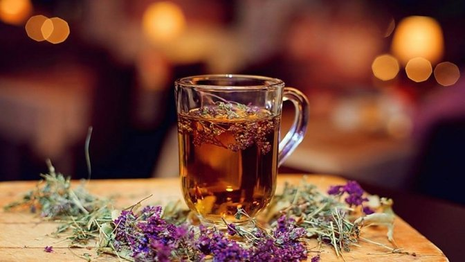 Карпатські трав'яні та квіткові чаї. Цілющі властивості з запахом гір, фото-5