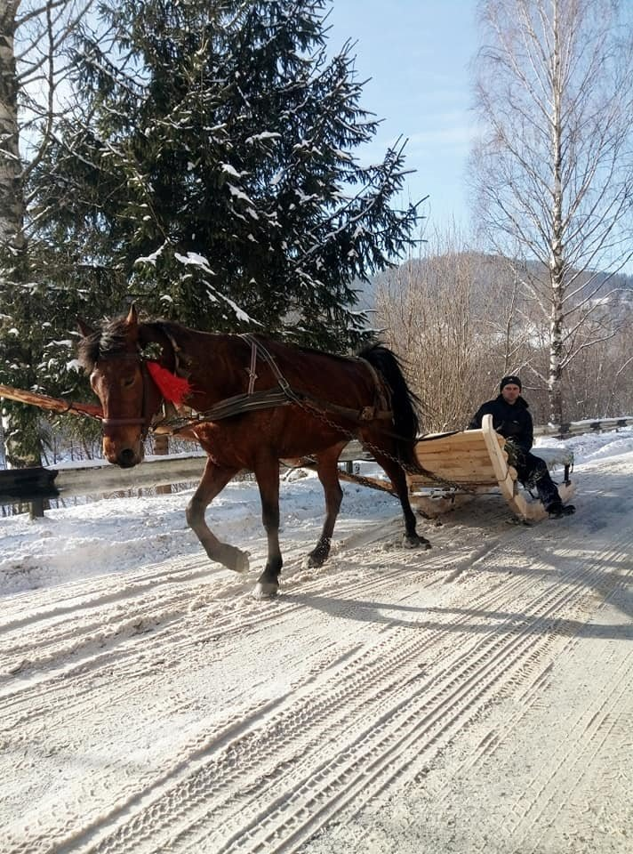 На Верховинщині Різдво зустрічали трембітами (ФОТО, ВІДЕО), фото-4